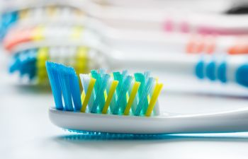 a set of toothbrushes